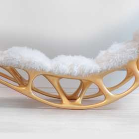 Morphogenesis chair